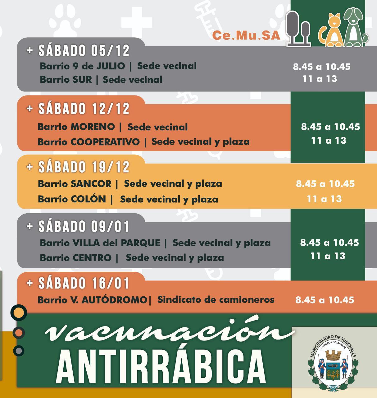 Vacunacion antirraica 2
